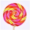 Swirl Pop R - Fruit Punch (24)